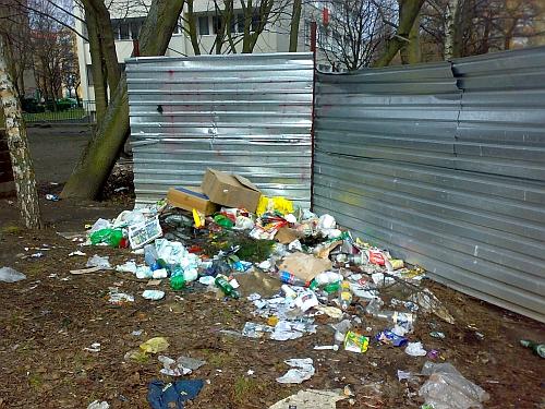 Wysypisko śmieci w pobliżu bloków spółdzielczych przy ulicy Malczewskiego. Fot. G.Kaźmierczak