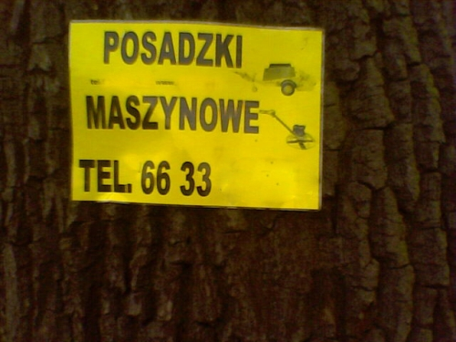 Tak jeden ze szczecińskich przedsiębiorców reklamuje swoje usługi.