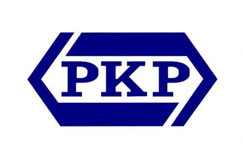 W ubiegłym roku PKP Cargo wraz z chińskim producentem wagonów Jinan Railway Vehicles Equipment utworzyła spółkę.