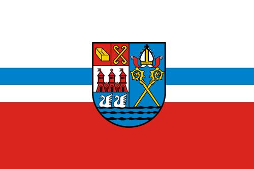 Kary za nielegalną wycinkę drzew w Kołobrzegu