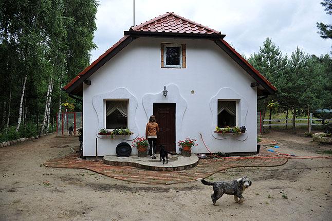 Psitułek. Fot. Łukasz Szełemej [PR Szczecin] Hotel dla zwierząt sposobem na wakacyjny wyjazd [ZDJĘCIA]