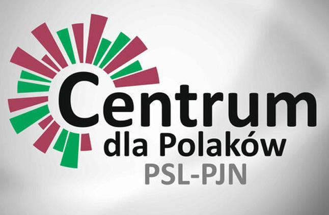 """PSL i PJN: """"Nie łączymy się póki co"""""""