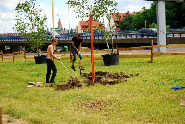 Nowy ogród miejski powstaje w Szczecinie