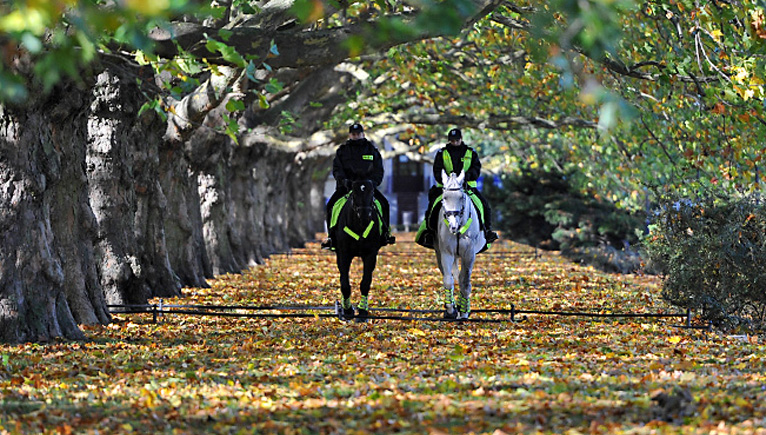 Patrol konny na Jasnych Błoniach [ZDJĘCIA]