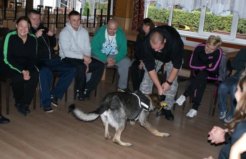 Psy pomagają żołnierzom wracającym z misji zagranicznych