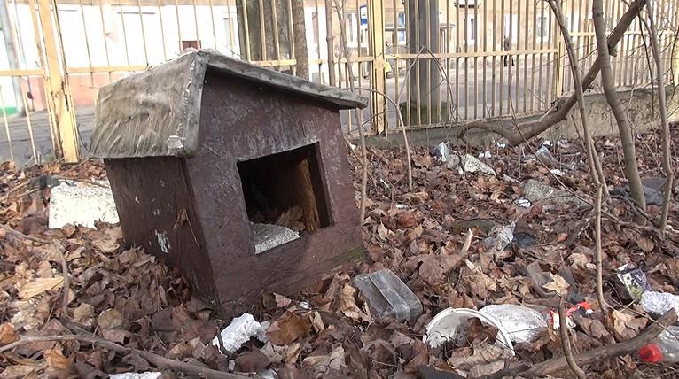 """Osiedle """"kocich slumsów"""" zniknie z ulicy Lubeckiego? Decyzję podejmie miasto"""