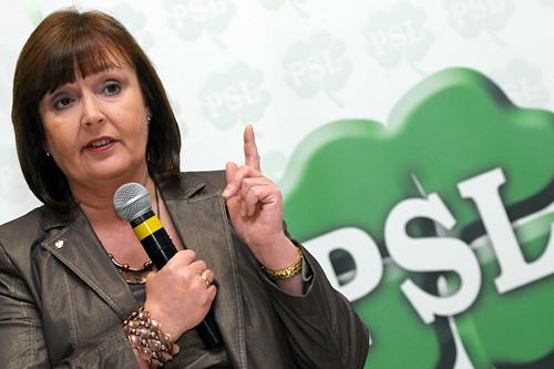 PSL odkrył karty przed wyborami do europarlamentu. Szef w regionie drugi na liście