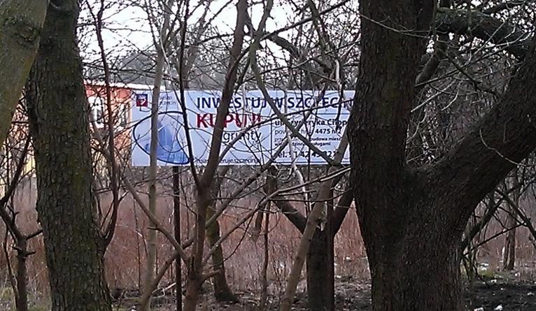 Billboard za krzakami i drzewami. Urzędnicy: Reklama jest skuteczna