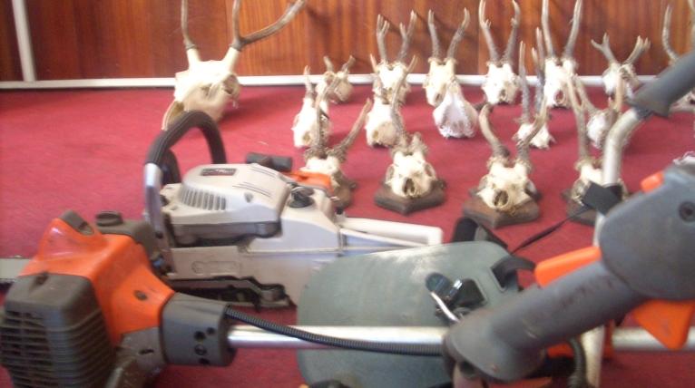 Włamali się do domu i ukradli piłę, świecznik oraz... poroża jeleni