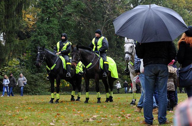 """Policja szuka koni. """"Chcemy być ekologiczni"""""""