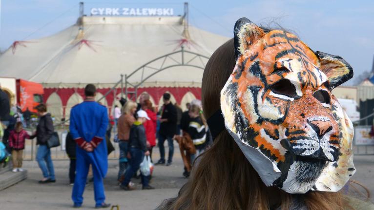 Kilku ekologów protestowało w Szczecinie przeciwko występom zwierząt w cyrkach