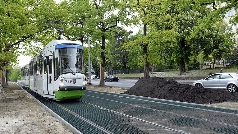 Tak powstaje pierwsze w Szczecinie zielone torowisko [WIDEO]
