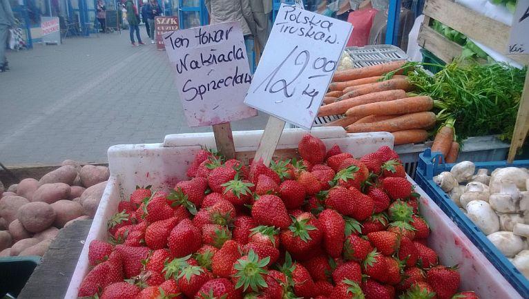 Producenci polskich truskawek załamani sytuacją na rynku
