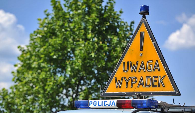 Wypadek na pasach. Policja szuka sprawcy