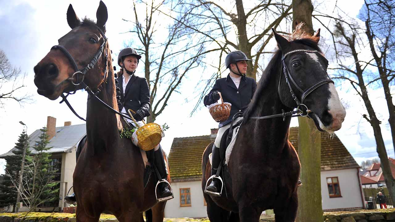 Policyjne konie też na święconce [ZDJĘCIA]