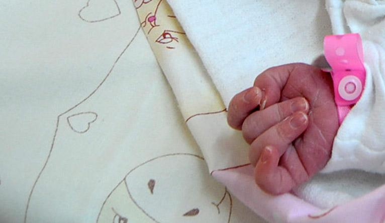 Rzadkie narodziny na szczecińskich Pomorzanach