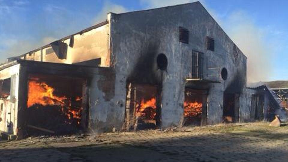 Duży pożar koło Szczecinka [ZDJĘCIA]
